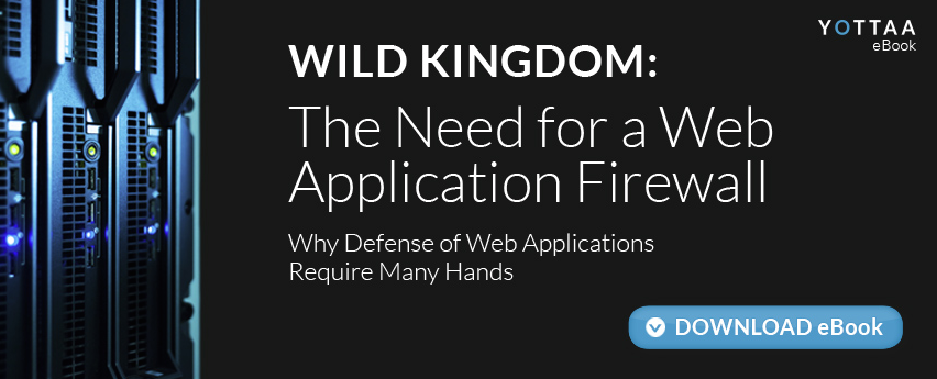 The Need for a Web Application Firewall